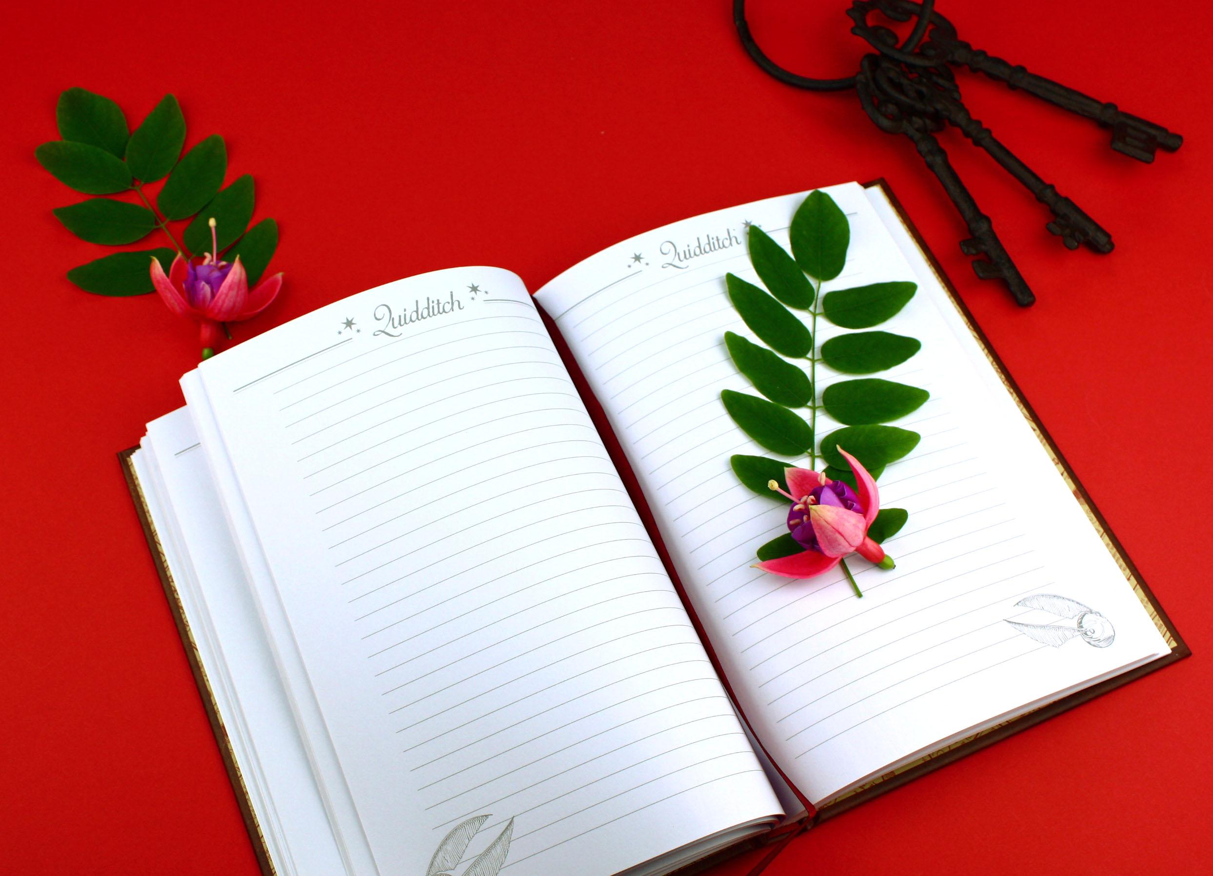 formation en écriture créative